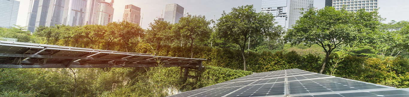 How green initiatives can save your company money